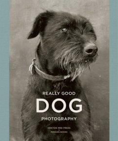 Really Good Dog Photography
