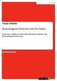 Kopenhagener Kriterien und die Türkei