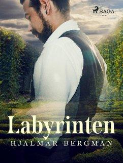 9789176390795 - Bergman, Hjalmar: Labyrinten (eBook, ePUB) - Bok