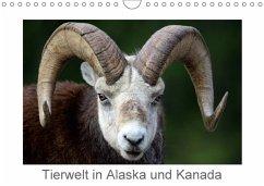 Tierwelt in Alaska und Kanada (Wandkalender 2018 DIN A4 quer) Dieser erfolgreiche Kalender wurde dieses Jahr mit gleichen Bildern und aktualisiertem Kalendarium wiederveröffentlicht.