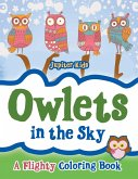 Owlets in the Sky
