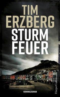 Sturmfeuer / Anna Krüger Bd.2 (eBook, ePUB) - Erzberg, Tim