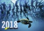 triathlon-Kalender 2018