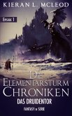 Das Druidentor / Die Elementarsturm-Chroniken Bd.1 (eBook, ePUB)