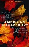 American Bloomsbury (eBook, ePUB)