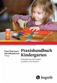 Praxishandbuch Kindergarten (eBook, ePUB)