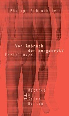 Vor Anbruch der Morgenröte (eBook, ePUB) - Schönthaler, Philipp