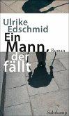 Ein Mann, der fällt (eBook, ePUB)