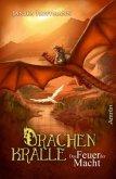 Das Feuer der Macht / Drachenkralle Bd.2