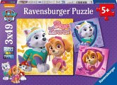 Ravensburger 08008 - Disney, Paw Patrol, Bezaubernde Hundemädchen