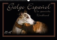 Galgo Español 2018- Der spanische Windhund (Wandkalender 2018 DIN A3 quer)