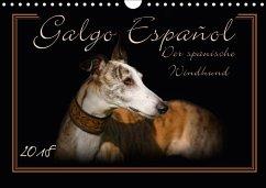 Galgo Español 2018- Der spanische Windhund (Wandkalender 2018 DIN A4 quer)