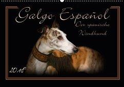 Galgo Español 2018- Der spanische Windhund (Wandkalender 2018 DIN A2 quer)
