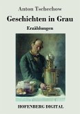 Geschichten in Grau (eBook, ePUB)