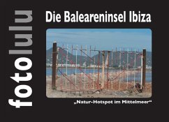 Die Baleareninsel Ibiza (eBook, ePUB)