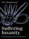 Suffering Insanity (eBook, ePUB)