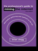 The Professional's Guide to Mining the Internet (eBook, ePUB)