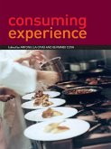 Consuming Experience (eBook, ePUB)