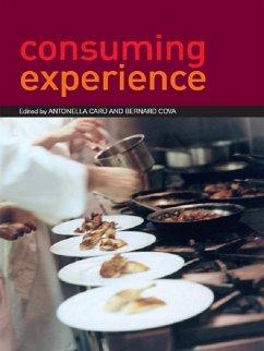 Consuming Experience (eBook, ePUB)