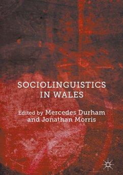 Sociolinguistics in Wales (eBook, PDF)