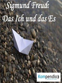 Das Ich und das Es (eBook, ePUB) - Dallmann, Alessandro