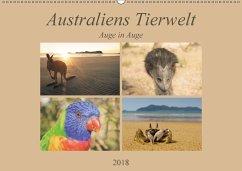 Australiens Tierwelt - Auge in Auge (Wandkalender 2018 DIN A2 quer)