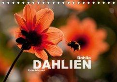 Dahlia - Dahlien (Tischkalender 2018 DIN A5 quer)