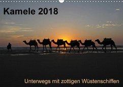 Kamele 2018 - Unterwegs mit zottigen WüstenschiffenCH-Version (Wandkalender 2018 DIN A3 quer)