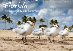 Florida - Sonne, Strände und Naturparks (Wandkalender 2018 DIN A2 quer)