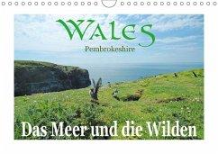 Wales Pembrokeshire. Das Meer und die Wilden (Wandkalender 2018 DIN A4 quer)