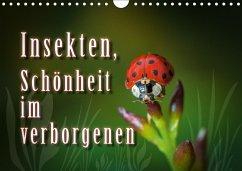 Insekten, Schönheit im verborgenen (Wandkalender 2018 DIN A4 quer)