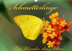 Schmetterlinge, Ein Wunder der Natur (Wandkalender 2018 DIN A3 quer)