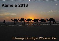 Kamele 2018 - Unterwegs mit zottigen WüstenschiffenCH-Version (Wandkalender 2018 DIN A2 quer)