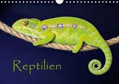 Reptilien (Wandkalender 2018 DIN A4 quer)