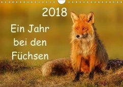 Ein Jahr bei den Füchsen (Wandkalender 2018 DIN...