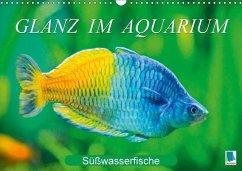 Glanz im Aquarium: Süßwasserfische (Wandkalender 2018 DIN A3 quer) Dieser erfolgreiche Kalender wurde dieses Jahr mit gleichen Bildern und aktualisiertem Kalendarium wiederveröffentlicht.