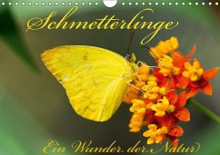 Schmetterlinge, Ein Wunder der Natur (Wandkalender 2018 DIN A4 quer)