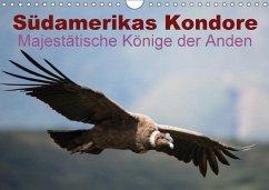 Südamerikas Kondore - Majestätische Könige der Anden (Wandkalender 2018 DIN A4 quer)