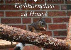 Eichhörnchen zu Hause (Wandkalender 2018 DIN A3 quer)