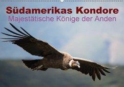 Südamerikas Kondore - Majestätische Könige der Anden (Wandkalender 2018 DIN A2 quer)