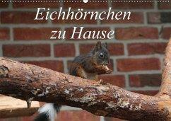 Eichhörnchen zu Hause (Wandkalender 2018 DIN A2 quer)