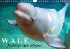 Wale - Kolosse der Meere (Wandkalender 2018 DIN A4 quer)