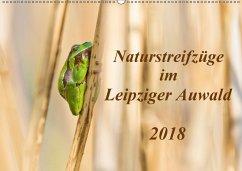 Naturstreifzüge im Leipziger Auwald (Wandkalender 2018 DIN A2 quer)