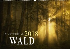 Mysterium Wald (Wandkalender 2018 DIN A2 quer)