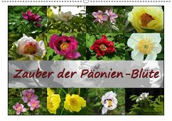 Zauber der Päonien-Blüte (Wandkalender 2018 DIN...