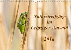 Naturstreifzüge im Leipziger Auwald (Wandkalender 2018 DIN A4 quer)