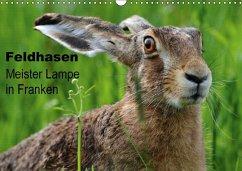 Feldhasen - Meister Lampe in Franken (Wandkalender 2018 DIN A3 quer)
