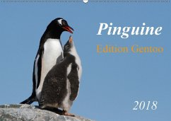 Pinguine - Edition Gentoo (Wandkalender 2018 DIN A2 quer)