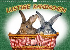 Lustige Kaninchen (Wandkalender 2018 DIN A4 quer) - www.eugenfoto.eu