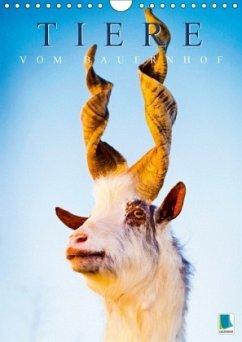 Tiere vom Bauernhof (Wandkalender 2018 DIN A4 hoch) Dieser erfolgreiche Kalender wurde dieses Jahr mit gleichen Bildern und aktualisiertem Kalendarium wiederveröffentlicht.
